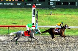St. Thomas' Sweet Sight blew by Gato Paso to take Sunday's feature on St. Croix.
