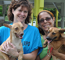 Volunteers Julie Case (left) and Lucille Savarino with AWC puppies Nate and Drew, who are up for adoption.