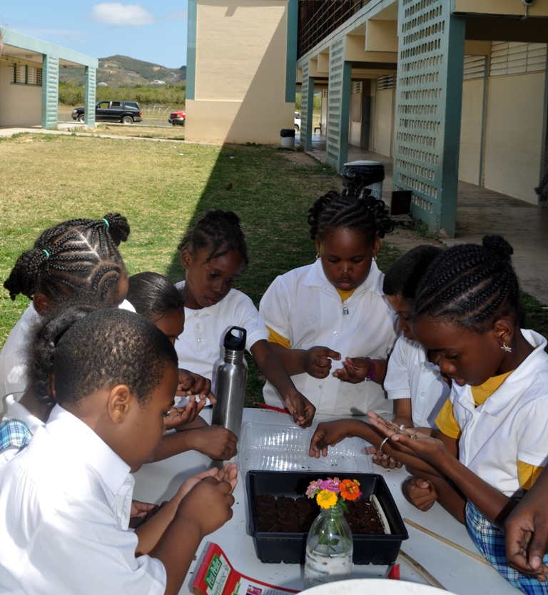 Students at the seed station learning how to plant flowers and snap beans.