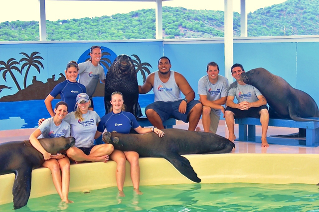 Coral World's animal trainers pose with the facility's sea lions. (Photo provided by Coral World)