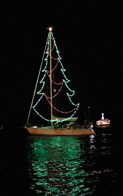 Molto Benne, as a giant Christmas tree, is among the lighted boats that dotted the harbor.