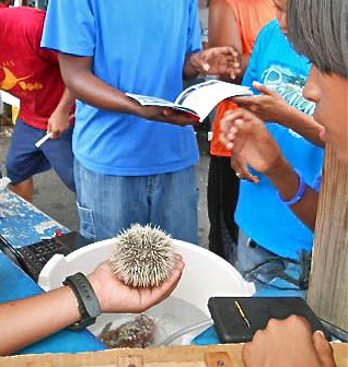 Students learn how to hold a sea urchin - Carefully!