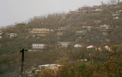 A Hugo-battered hillside on St. John 20 years ago.