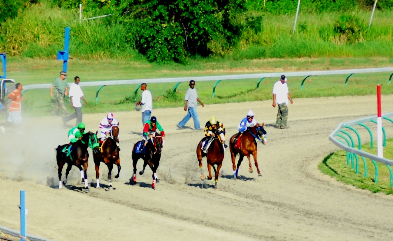 """'And they're off!' at the Randall """"Doc"""" James racetrack."""