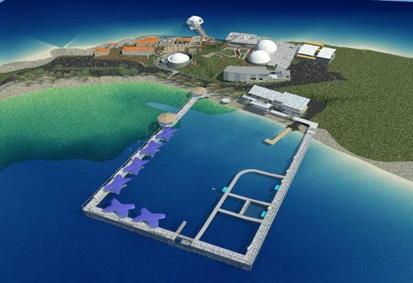Drawing of proposed dolphin swim area (art courtesy of Coral World).