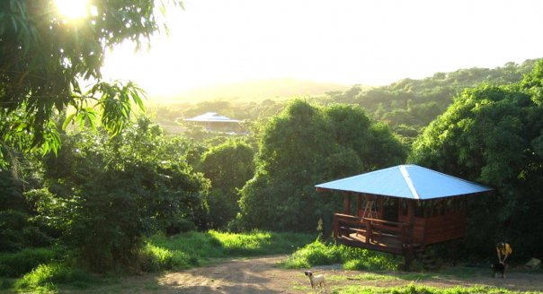Farming in a beautiful place (Photo courtesy Ridge to Reef Farm).