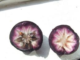 Caimite or starfruit.