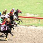 Horses race at St. Croix's Randall 'Doc' James Racetrack. (File photo)