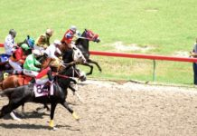 Horses race in 2011 at St. Croix's Randall 'Doc' James Racetrack. (File photo)