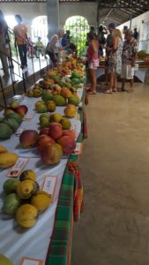 Mangos at Mango Melee 2017