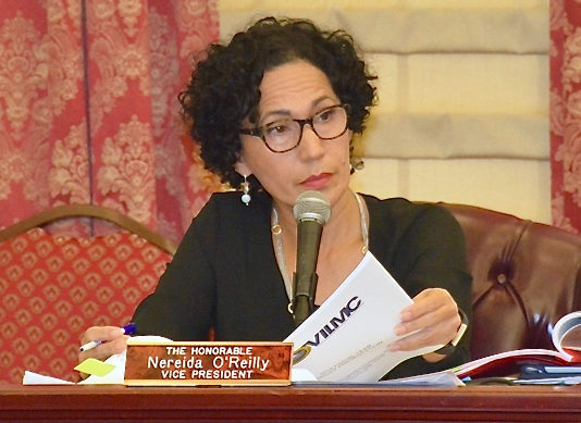 Sen. Nereida Rivera-O'Reilly during a 2017 Senate hearing. (File photo)