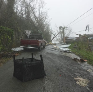 On St. Thomas, debris covers a road after Hurricane Maria (Kelsey Nowakowski photo)