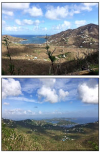 The view from the Bordeaux Overlook on Oct. 1, top, and a greener view from the overlook on Oct. 29.