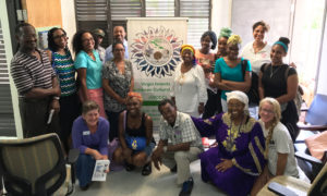 VICCC Executive Director Chenzira Davis-Kahina (seated, in purple) with UVI faculty and others at Thursday's commemoration of the VICCC's first five years. (Image provided by VICC Executive Director Chenzira Kahina)