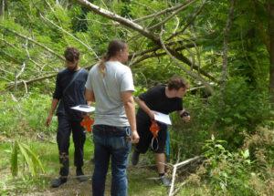 Manu Afshar, Antonio Farchette, Owen Clower begin the work ahead of them. (sap photo)
