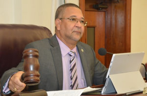 Sen. Jean Forde at Tuesday's Committee on Education, Youth and Recreation hearing.