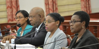 From left: VICA Director Tasida Kelch, Historic Preservation Commission Chairman Felipe Ayala, DPNR Commissioner Dawn Henry and DPNR Director of Administrative Services Althea Grant testify Tuesday before the Senate Finance Committee.