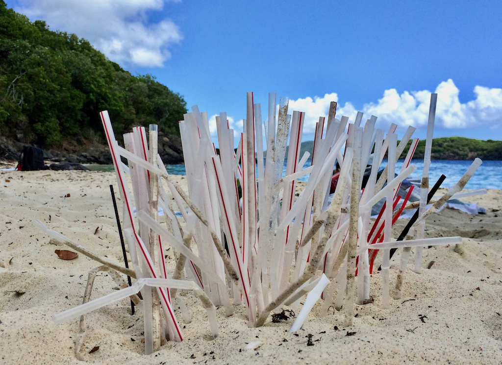 V.I. Clean Coasts is focusing on eliminating single-use plastics, including these plastic straws that ended up on Coki Beach. (Photo by Kitty Edwards)