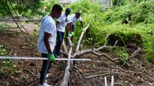 The New York delegation chop and clear downed trees at Bethlehem House.