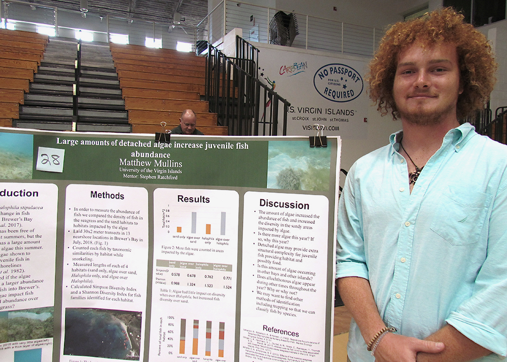Matthew Mullins studies an invasive species of algae and how it affects the diversity of local fish. (Gerard Sperry photo)