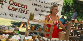 Beekeeper Toni Downs sells her honey and honey-based products at the Starving Artists' sale Sunday.
