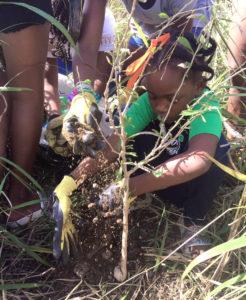 Young volunteer Danielle Remie plants her tree.