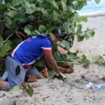 beach cleanup 4