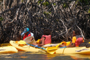 Cleanup volunteers try to get deep into the mangroves to get trash out of the complex root systems. (April Knight photo)