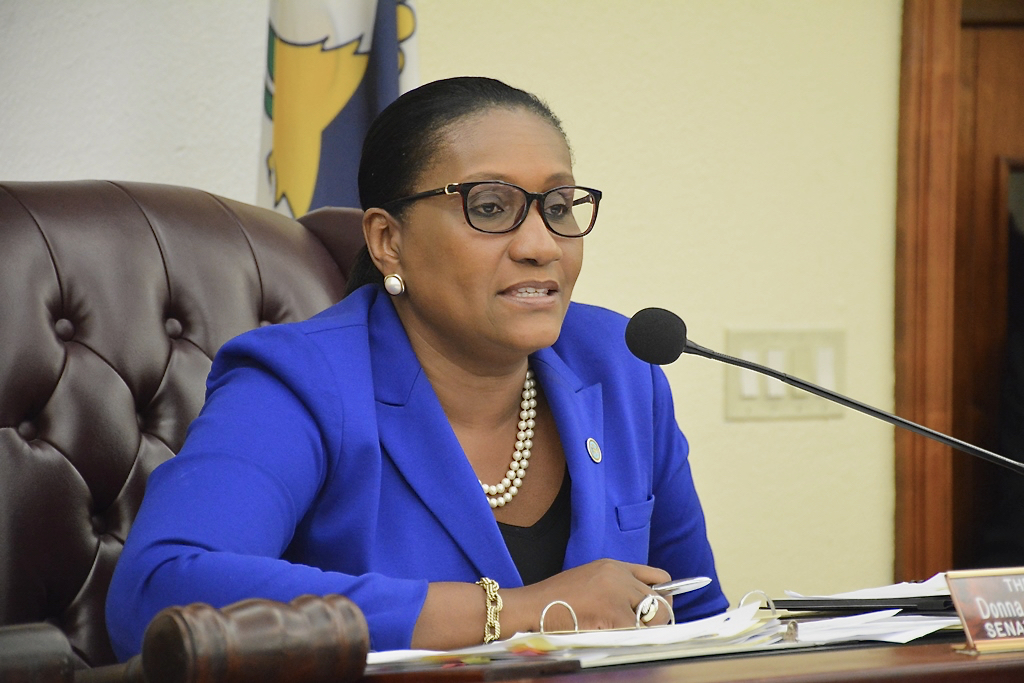 Sen. Donna Frett-Gregory (Photo by Barry Leerdam, V.I. Legislature)