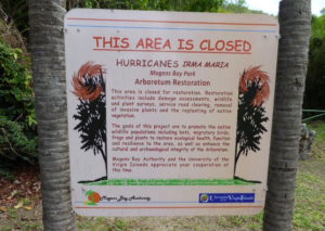 The Alphonso Nelthropp Arboretum is still off limits nearly two years after Hurricanes Irma and Maria (sap photo)