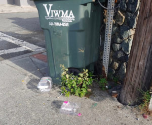 Plastic waste litters the streets of the islands. (Source photo)