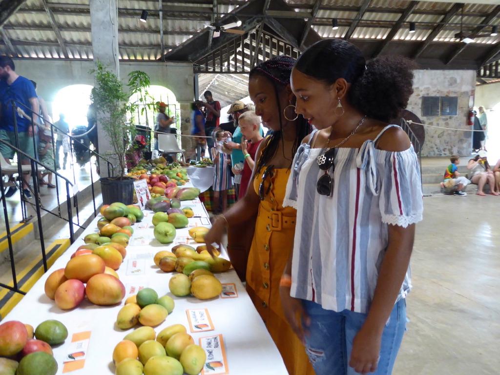 Nylani Bernier and Nadalie Joseph admire the many varieties of mangos on display. (Source photo by Linda Morland)