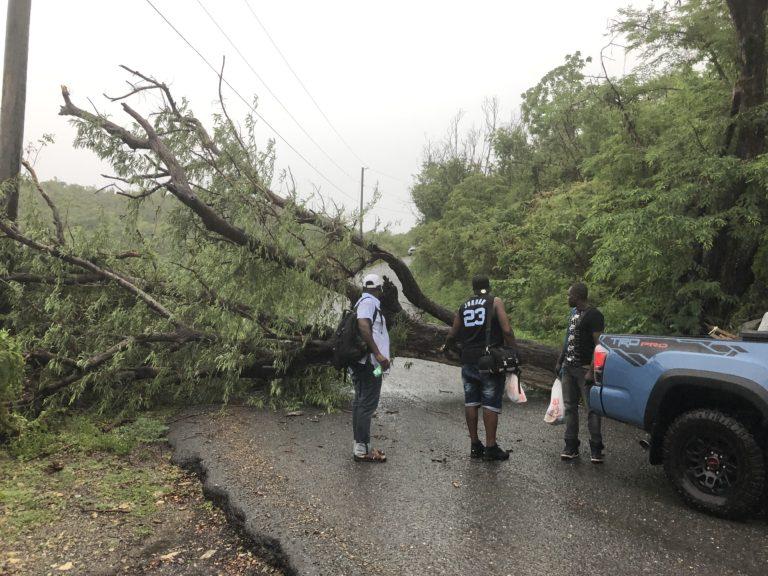 Dorian Upgraded to Hurricane; Track Shifts Toward USVI