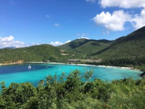 14 months post Irma, the north shore of St. John is once again completely green. (Source py Amy Roberts)