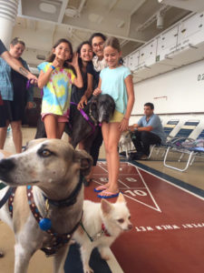 Children cluster around Ellie Cicero's dogs on board the mercy ship from St. Croix to Miami after Hurricane Maria. (Photo submitted by Ellie Cicero)