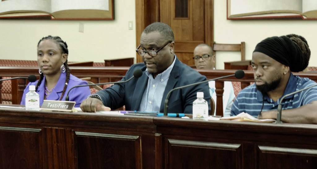 From left, Raquel John-Baptiste from Commercial Property Management LLC, Deputy Commissioner of the Property and Printing Division Vincent Richards and Jason Jackson, owner of Total Auto Package, LLC, testify Tuesday. (Photo by Barry Leerdam for the USVI Legislature)