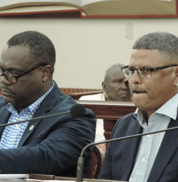 From left, Vincent Richards and Eric Castro Testify at Tuesday's hearing. (Photo by Barry Leerdam for the V.I. Legislature)