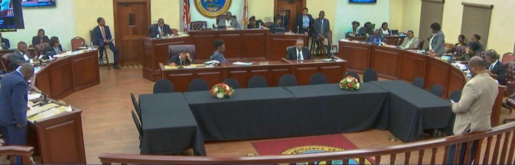 The Senate in session Wednesday. (V.I. Legislature photo)