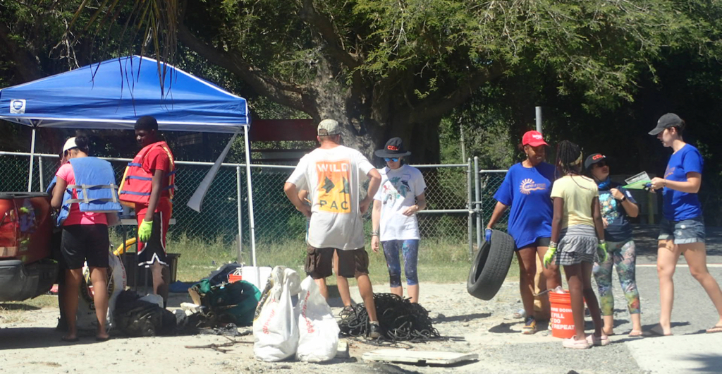 Volunteers stand in line to weigh trash collected from Salt River Bay mangroves. (Source photo by Susan Ellis)