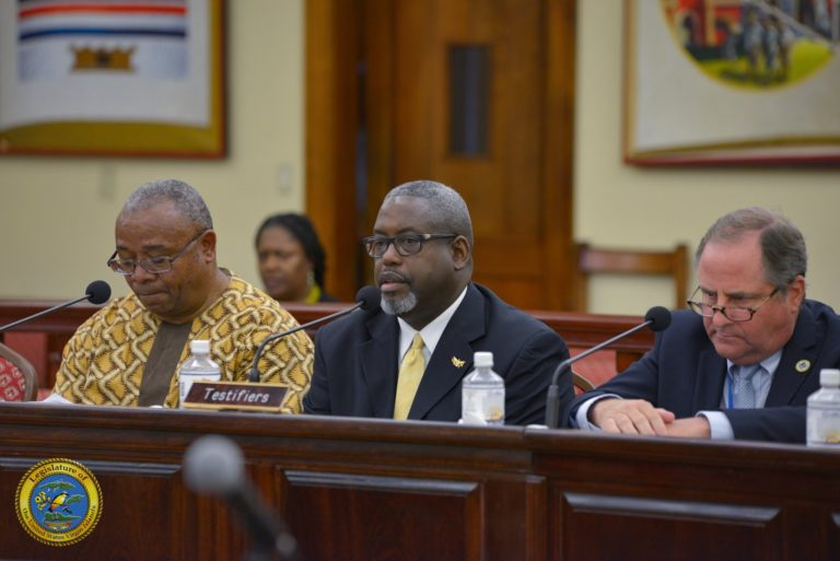 Testifiers Butt Heads with Lawmakers Over WAPA and PSC Board Expertise