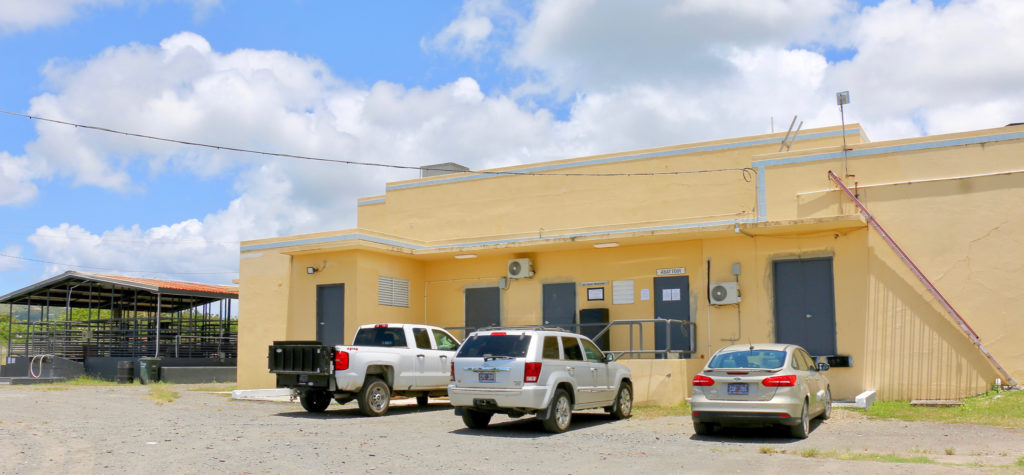The St. Croix abattoir and livestock pens. (Source photo by Linda Morland)