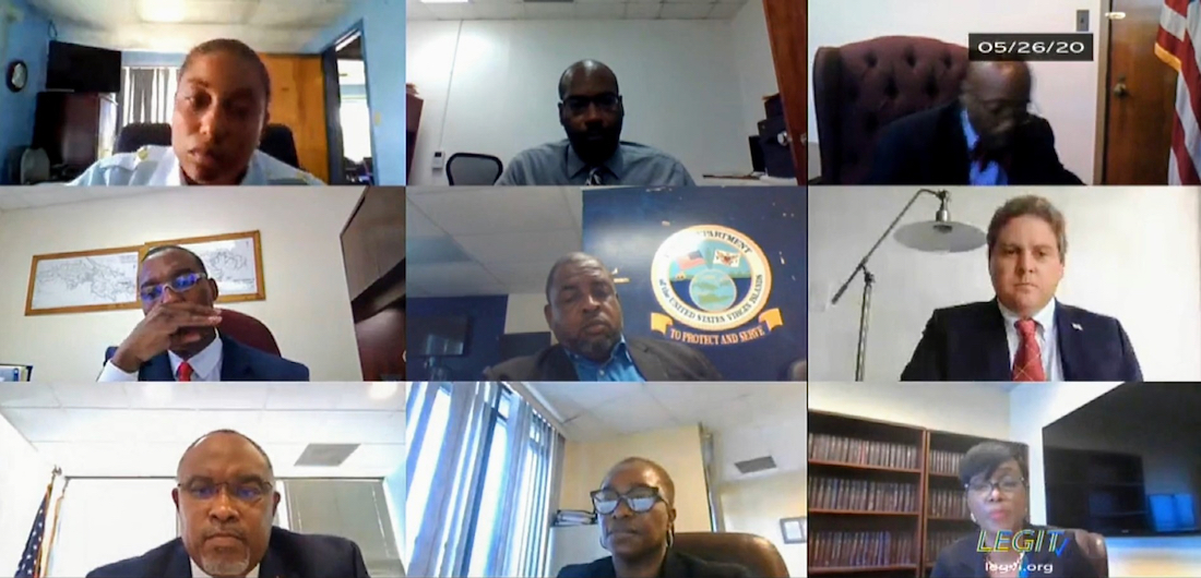 Screen capture shows witnesses deliver testimony online during Tuesday's meeting of the Senate Committee on Homeland Security, Justice, Public Safety, and Veterans' Affairs.