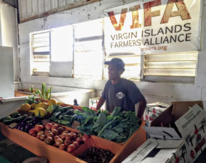 Allen Stewart volunteers at the VIFA booth during Agrifest 2020. (Photo submitted by VIFA President Nate Olive)