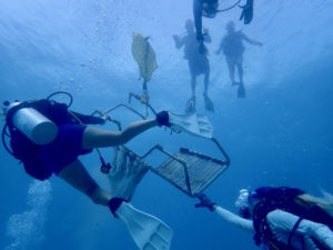 Divers use lift bags to raise heavy debris from the sea floor to the surface. which were then carried by divers to the boat. (Photo submitted by Howard Forbes Jr.)