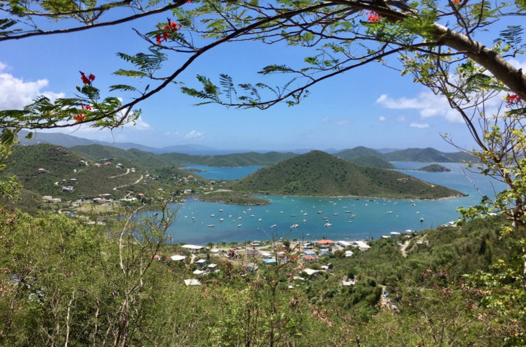 Bryan Removes Head of Save Coral Bay from Coastal Zone Management Committee
