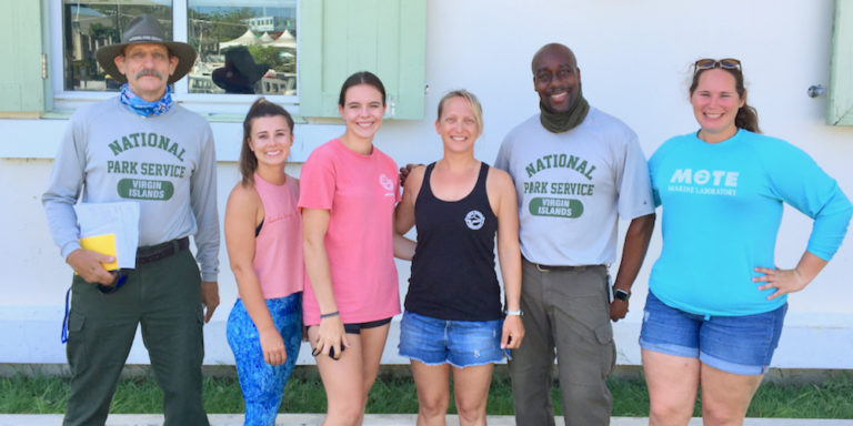 Park Service Teams up with Mote Labs to Test Coral Disease Treatment