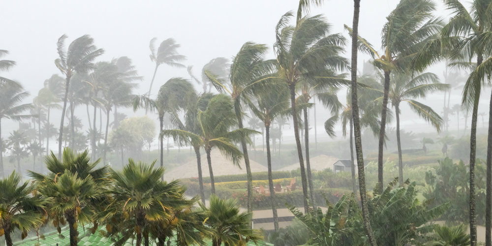 hurricane storm, weather, tropical weather,