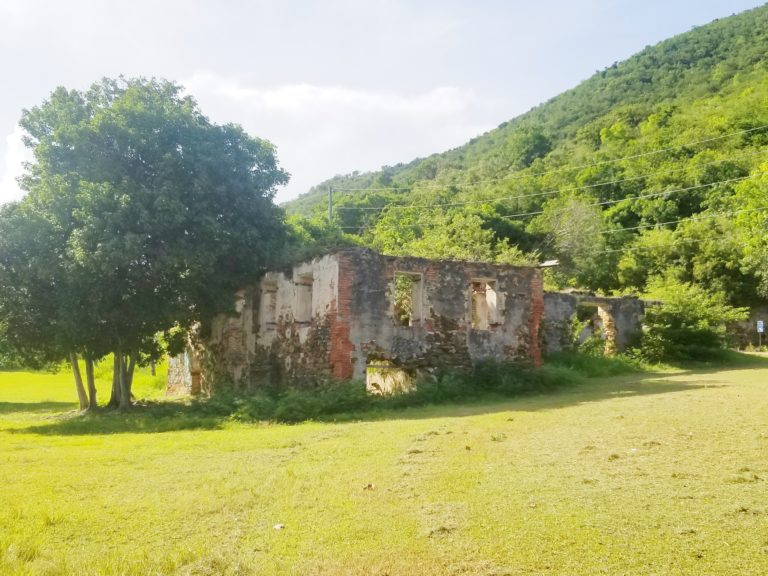 Owners Responsible For Maintaining Historic Landmarks, Like UVI Ruins